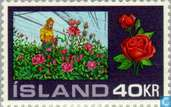 Postage Stamps - Iceland - Greenhouses