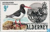 Timbres-poste - Aurigny - Les oiseaux de mer