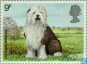 Postage Stamps - Great Britain [GBR] - Dogs