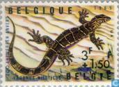 Postzegels - België [BEL] - Reptielen