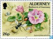 Postage Stamps - Alderney - Flora and fauna