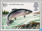 Postzegels - Groot-Brittannië [GBR] - Vissen