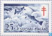 Postage Stamps - Finland - Anti-tuberculosis