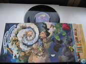 Disques vinyl et CD - Moody Blues, The - A question of balance