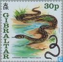 Timbres-poste - Gibraltar - An chinois Nouvel An du Serpent