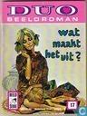 Strips - Duo Beeldroman (tijdschrift) - Wat maakt het uit?