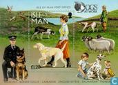Timbres-poste - Man - Chiens