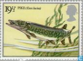 Postage Stamps - Great Britain [GBR] - Fishing