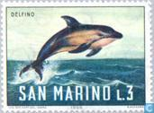 Briefmarken - San Marino - Sea Creatures
