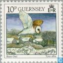 Postage Stamps - Guernsey - Birds