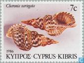 Postzegels - Cyprus [CYP] - Schelpen