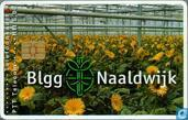 Blgg Naaldwijk