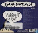 Platen en CD's - Pavement - Wowee zowee