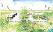 Postage Stamps - Denmark - Birds
