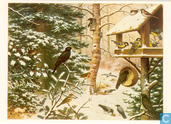 Cartes postales - Vuurbaak, De - Vogels in de winter