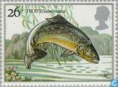 Briefmarken - Großbritannien [GBR] - Angeln