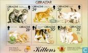 Postage Stamps - Gibraltar - Cats
