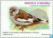 Postage Stamps - Andorra - Spanish - Birds