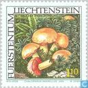 Timbres-poste - Liechtenstein - Champignons