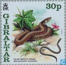 Postage Stamps - Gibraltar - Chinese New Year Year of the Snake