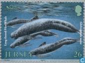 Postzegels - Jersey - Int. Dag Milieubescherming
