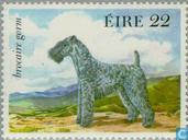 Timbres-poste - Irlande - Chiens