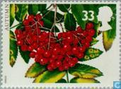 Postage Stamps - Great Britain [GBR] - The Four Seasons-Autumn