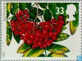 Postzegels - Groot-Brittannië [GBR] - De vier jaargetijden- Herfst