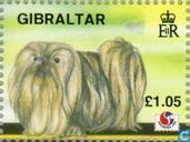 Postage Stamps - Gibraltar - Stamp Exhibition Philakorea