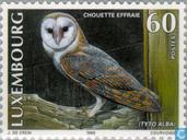 Postage Stamps - Luxembourg - Owls