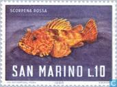 Briefmarken - San Marino - Sea Creatures