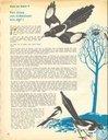 Bandes dessinées - Tam Tam (tijdschrift) - Nummer  9