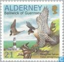 Postage Stamps - Alderney - WWF-Peregrine Falcon