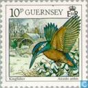 Timbres-poste - Guernesey - Oiseaux