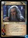 Gandalf, Leader of the Company