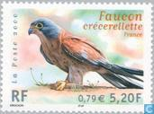 Postage Stamps - France [FRA] - Endangered birds