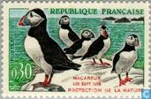 Postage Stamps - France [FRA] - Atlantic Puffin