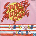 Vinyl records and CDs - Spider Murphy Gang - Ich schau dich an