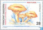 Postzegels - Andorra - Spaans - Natuurbescherming