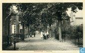 Cartes postales - Lochem - Kastanjelaan