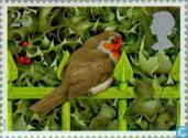 Christmas - Red Robins