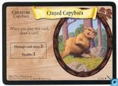 Trading cards - Harry Potter 5) Chamber of Secrets - Crazed Capybara