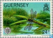Guernesey Société 100 années