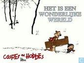 Strips - Casper en Hobbes - Het is een wonderlijke wereld