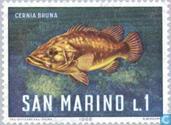 Timbres-poste - Saint-Marin - Créatures de la mer