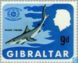 Postage Stamps - Gibraltar - Int. year of tourism
