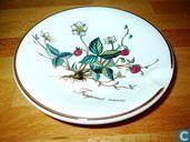 Keramik - Botanica - Villeroy & Boch Aschenbecher: Botanica