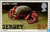 Briefmarken - Jersey - Sea Creatures