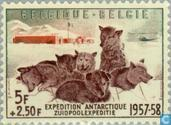 Briefmarken - Belgien [BEL] - Südpol-Expedition
