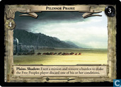 Pelennor Prairie